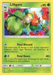 Sun and Moon Guardians Rising card 5
