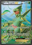 XY Ancient Origins card 84