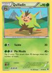 XY BREAKthrough card 10