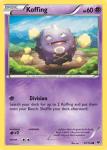 XY Fates Collide card 27